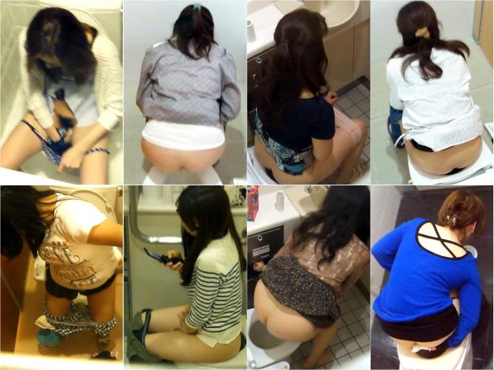 15260354 H-V.Japanese toilet style.No,121